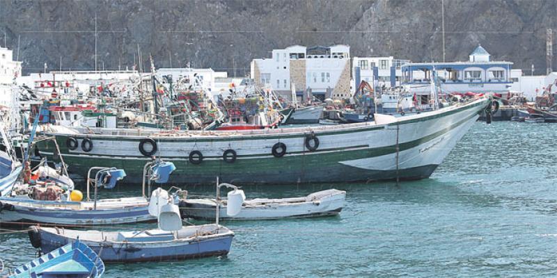 Tétouan: 40 millions de DH pour la halle aux poissons
