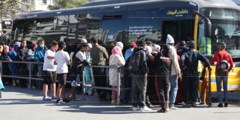 Enquête Sunergia/L'Economiste: Transport public, la galère continue…