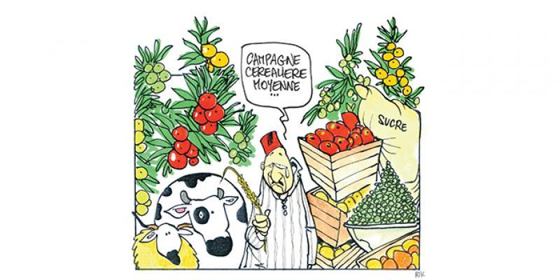 Campagne agricole: 80% du PIB hors aléas climatiques