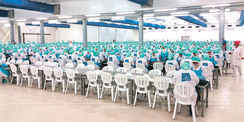 Economie circulaire: Une nouvelle usine s'installe à Tanger