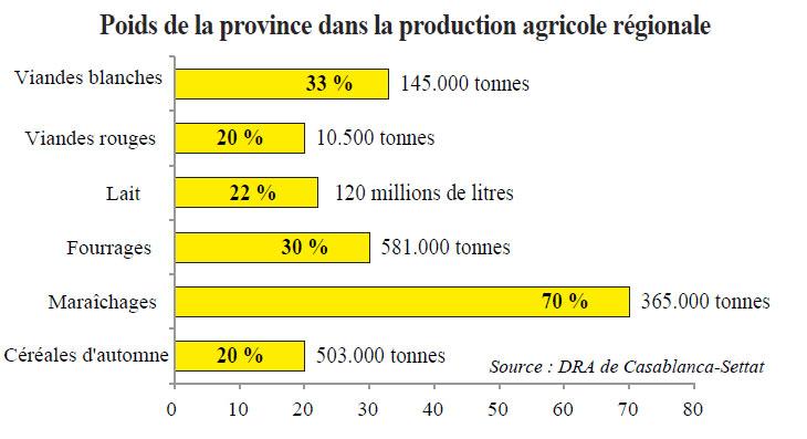 agriculture_doukkala.jpg
