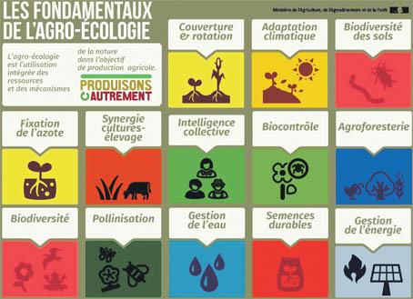 agroecologie_030.jpg