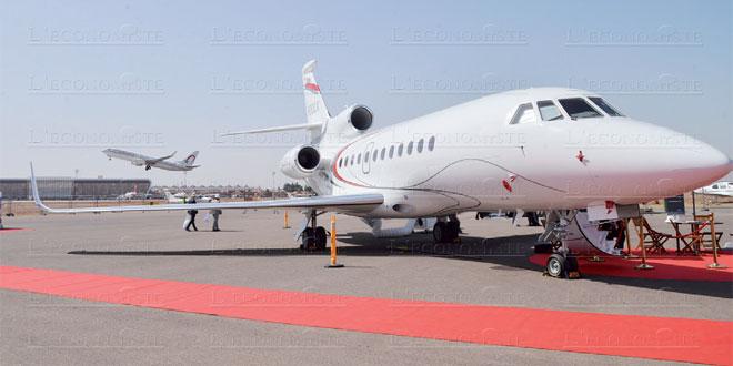 aviation-daffire-002.jpg