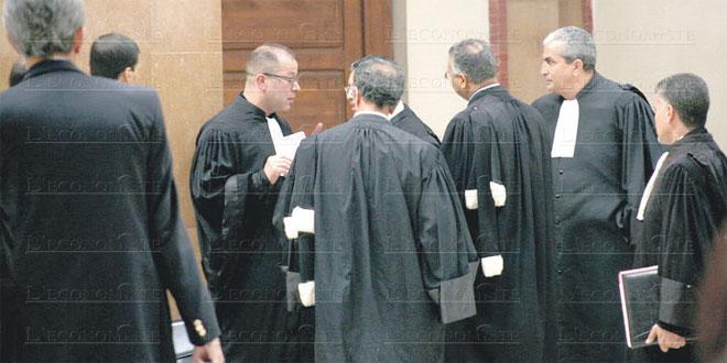 avocats-063.jpg