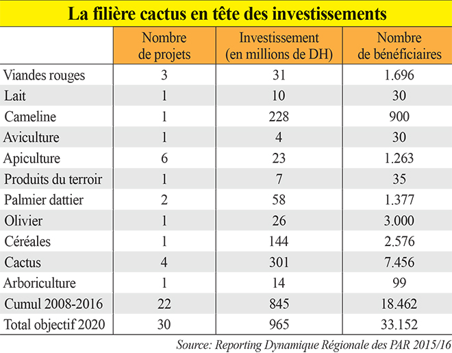 cactus_agriculture_solidaire.jpg