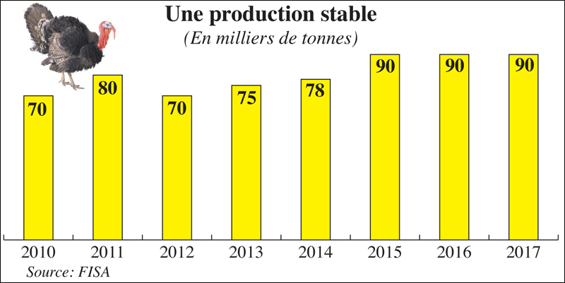 dindes_production_058.jpg