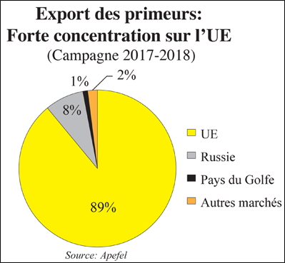 export_fruits_et_legumes_005.jpg