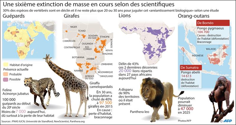 extinctions_animaux_003.jpg