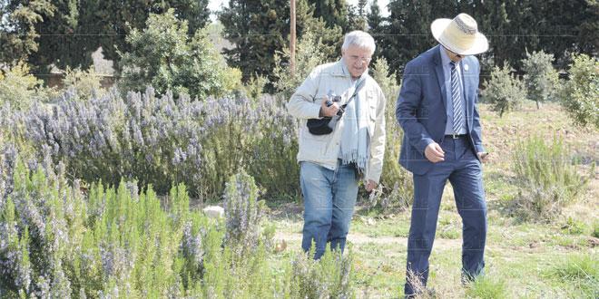 fes-tourisme-agriculture-079.jpg