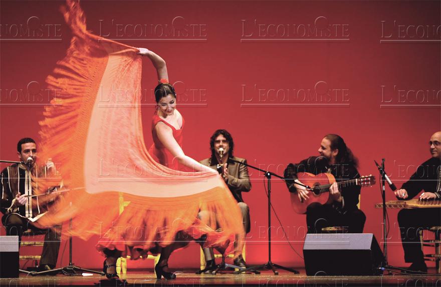 flamenco_022.jpg