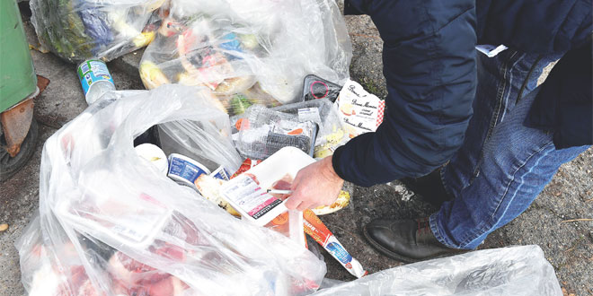 gaspillage-alimentaire-069.jpg
