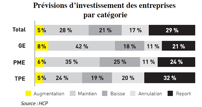 hcpprevisions_dinvestissement_des_entreprises_par_categorie.jpg