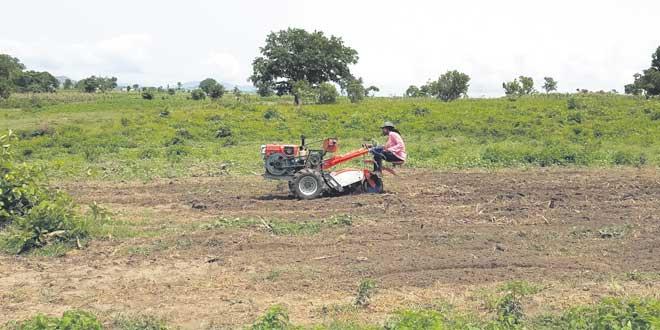 hello-tracteur-052.jpg