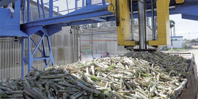 industrie-sucriere-064.jpg