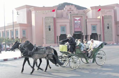 marrakech_cop_020.jpg
