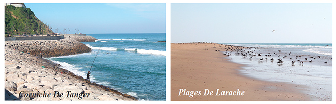 plages_nord3.jpg