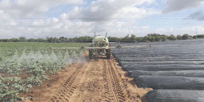 plf-2019-les-agriculteurs-007.jpg