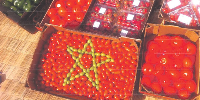 tomates-agrumes-062.jpg