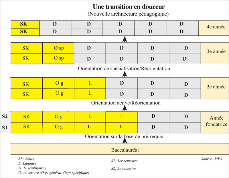 transition_langues_098.jpg