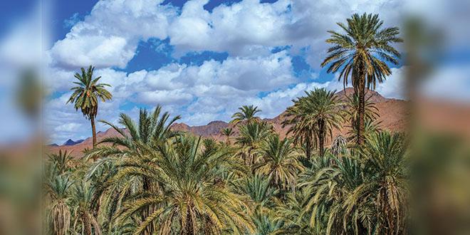 Transavia: C'est parti pour la liaison Paris Orly-Ouarzazate