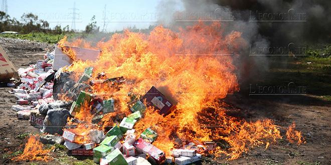 Laâyoune: 2 tonnes de chira incinérées